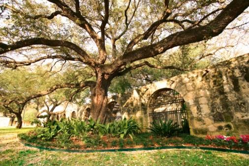 San Antonio Mortgage Rates Survey – Week of February 27, 2012